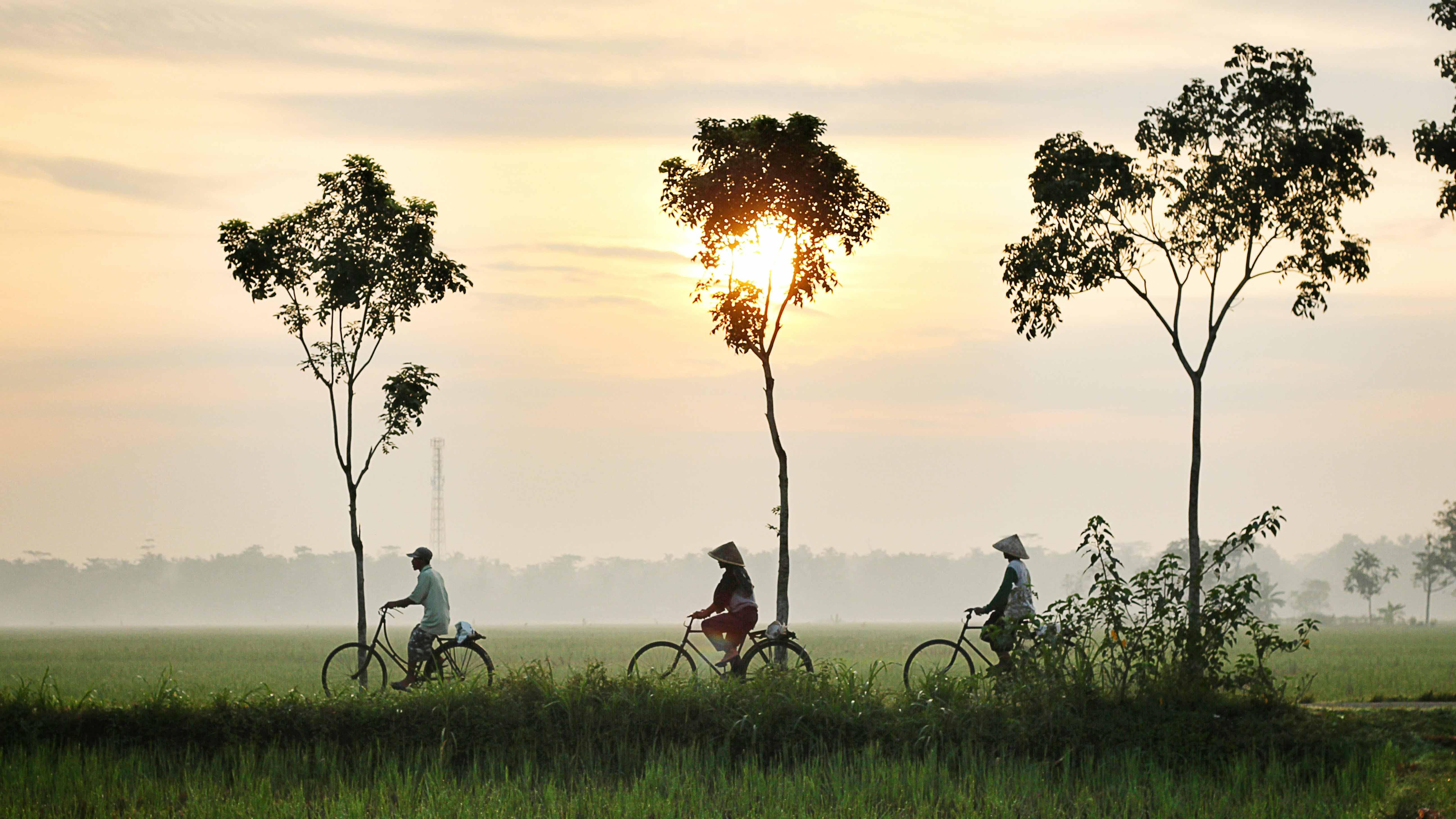 bicycle-riding-947336